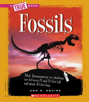 Fossils By Squire, Ann O.